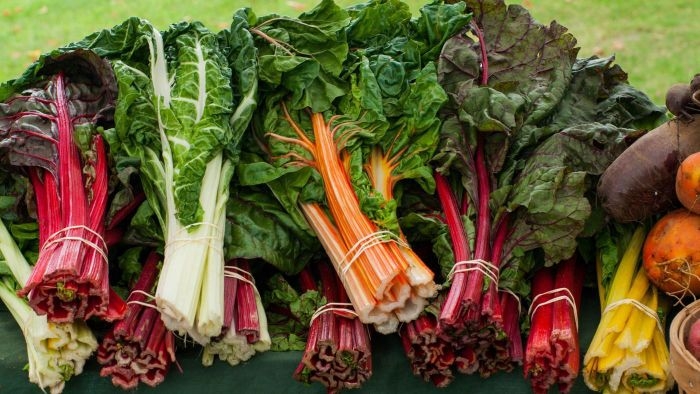 Why is organic food important?