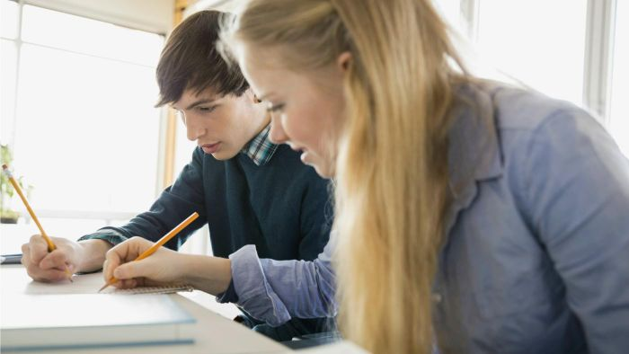 How to Do a Peer Review of an Essay?