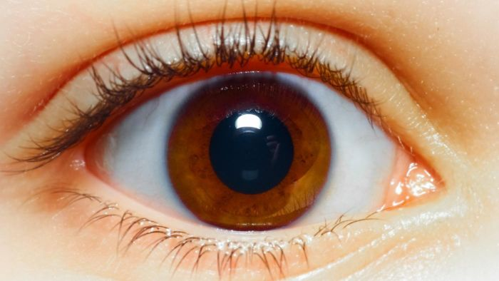 Why Are People's Eye Colors Different?