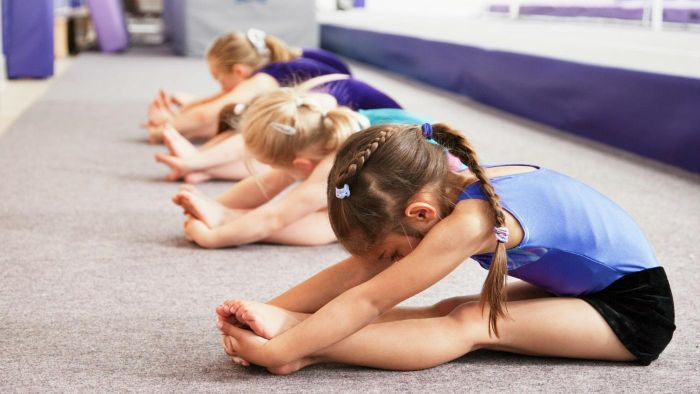 What are the phases of gymnastics?