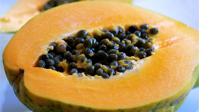 How Do You Plant Papaya Seeds?