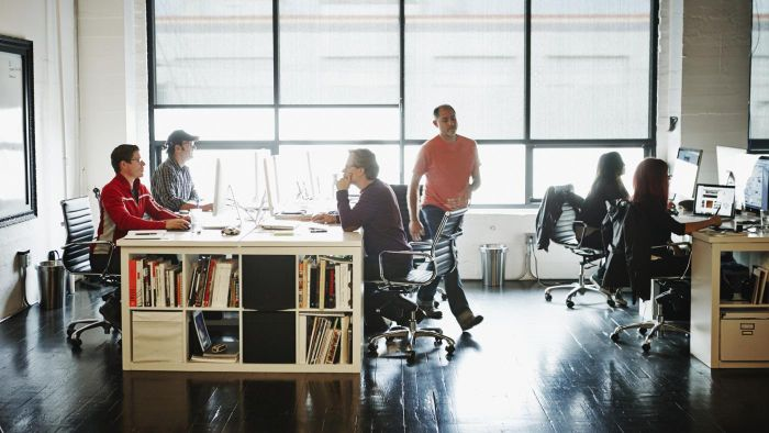 What Are Private Sector Organizations?