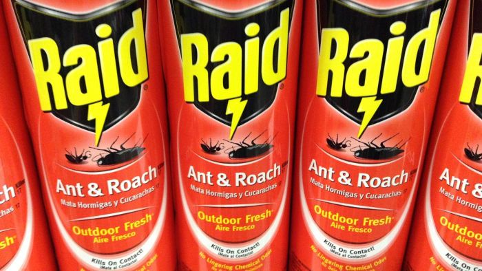 What Products Are Best for Killing Roaches?