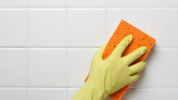 How Do You Remove Pink Mildew Stains?