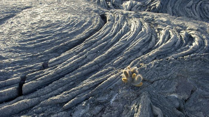 What Rock Is Formed When Magma Cools at the Earth's Surface?