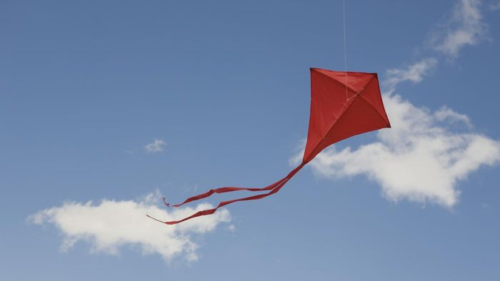 What's the Difference Between a Kite and a Rhombus?