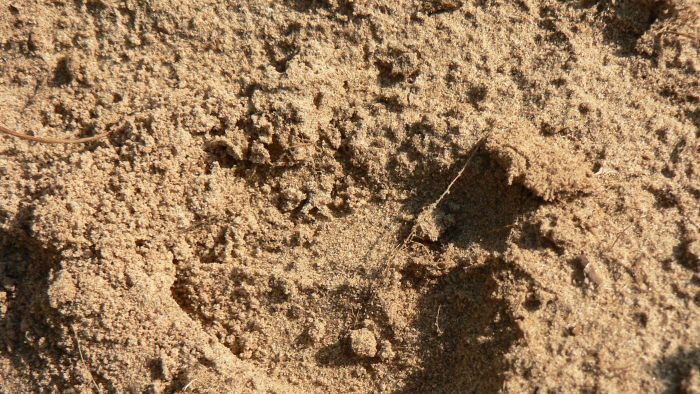 What is sandy soil for Soil definition