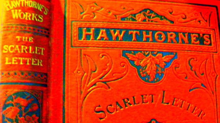 the symbol of the letter a in the novel the scarlet letter by nathaniel hawthorne Need help with the custom house in nathaniel hawthorne's the scarlet letter check out our revolutionary side-by-side summary and analysis.