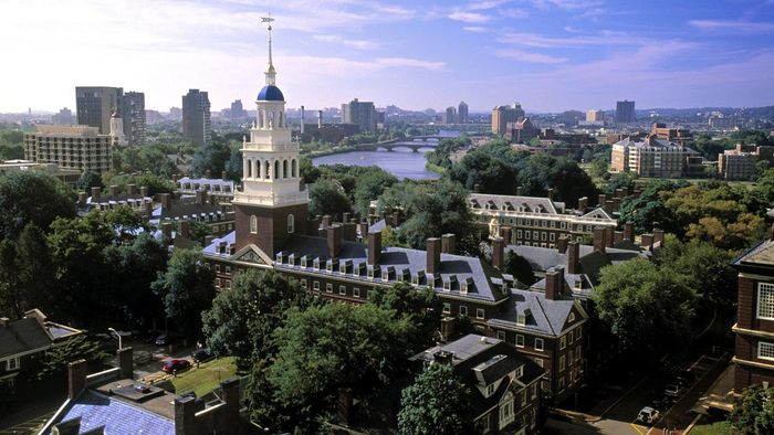 Which Schools Are in the Ivy League?