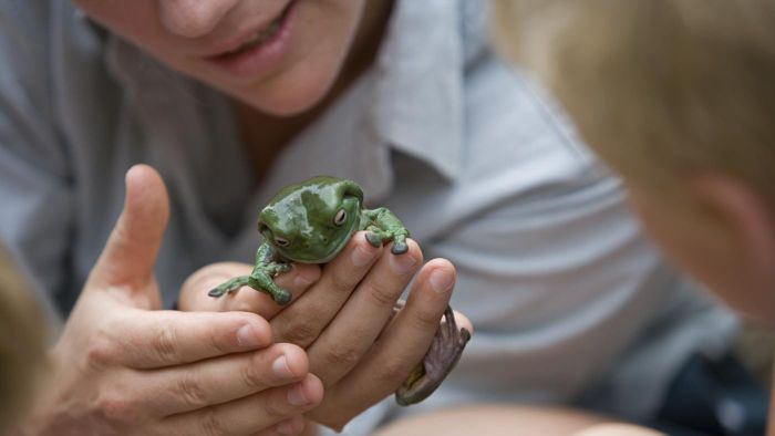 Why do scientists use scientific names for organisms?