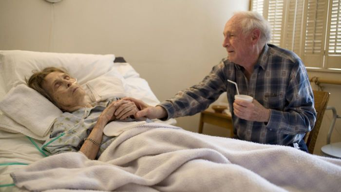 What Services Does Hospice Care Offer?