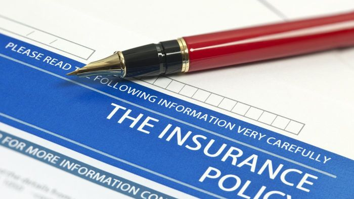What Should I Look for in Insurance Company Reviews?