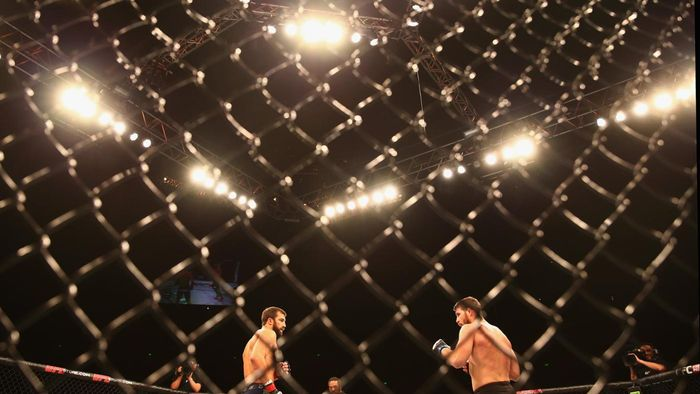 What is the size of the UFC octagon?