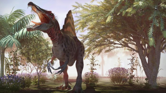 What was the spinosaur's back fin used for?