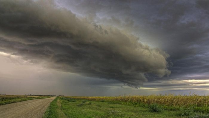 What is storm chasing?