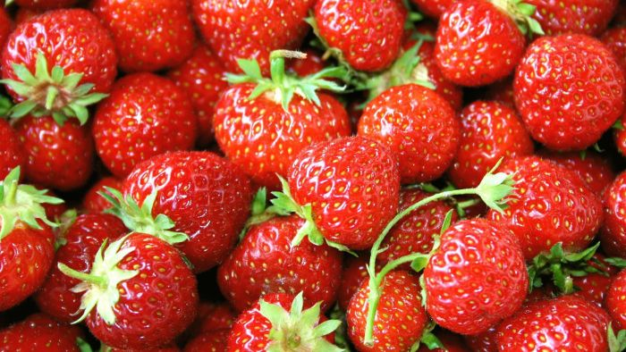 Where Do Strawberries Come From?