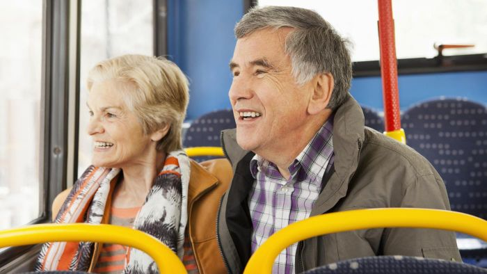 What subsidies are available for elderly transportation services?