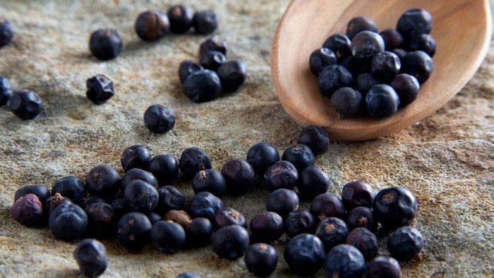 What is a substitute for juniper berries?