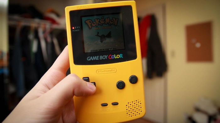 """How Do You Get Surf in """"Pokemon LeafGreen""""?"""