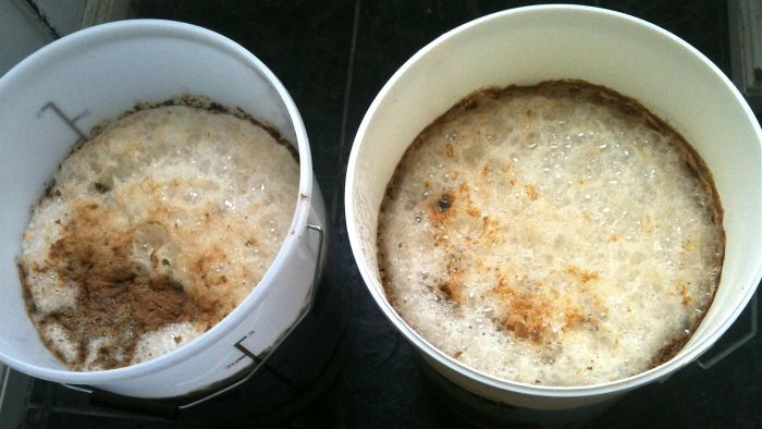What Temperature Affects Yeast Fermentation?