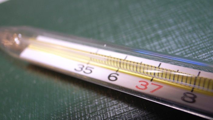 What Is a Thermometer Used For?