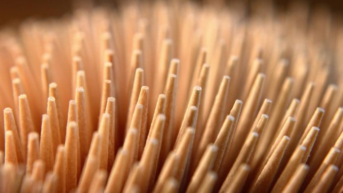 Where do toothpicks come from?
