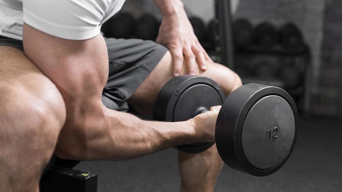 Which trunk muscle allows you to adduct your arms?