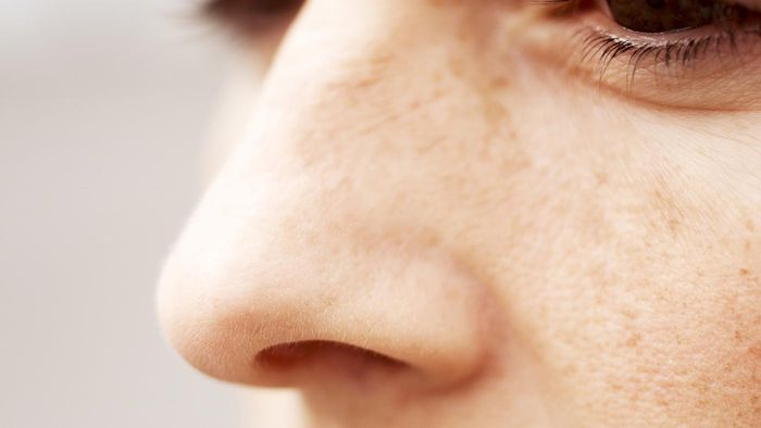 What are two functions of the mucosa found in the nasal cavity?