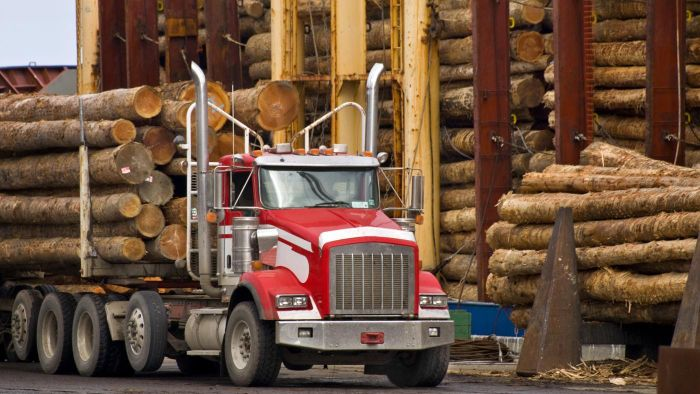 What Type of License Is Required to Operate a Logging Truck?