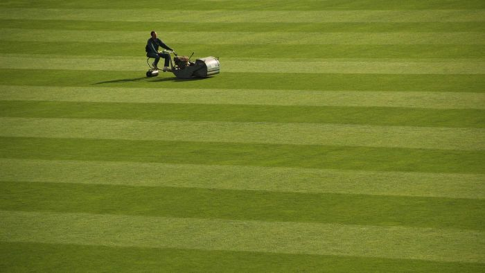 What Type of Oil Goes in a Lawnmower?