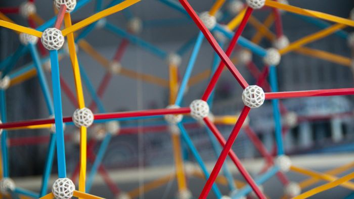 What makes up the rungs of the DNA molecule?