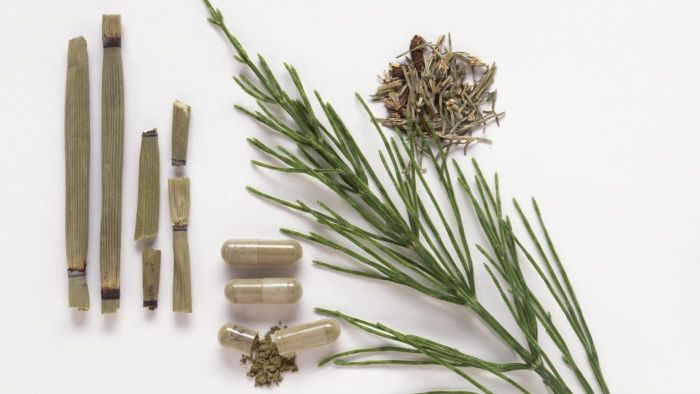 What Are the Uses for Horsetail Extract?
