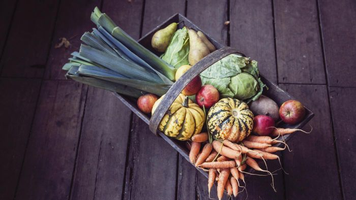 What Vegetables Are Highest in Vitamin K?