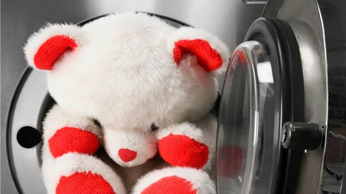 How Do You Wash Stuffed Animals?