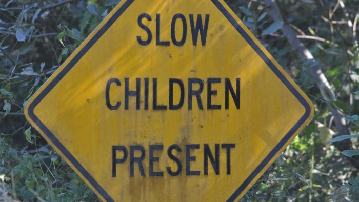 What Does a Watch for Children Sign Look Like?