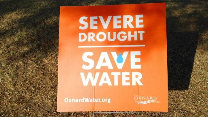 What Are Some Water-Saving Slogans?
