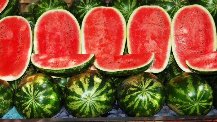When Is Watermelon in Season?