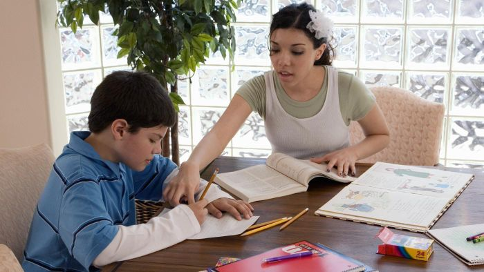 What Website Provides Free Curriculum to Homeschool Students?