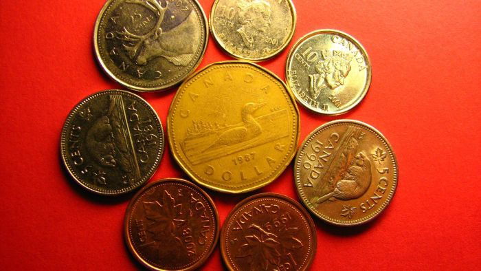 What is the weight of Canadian coins in grams?