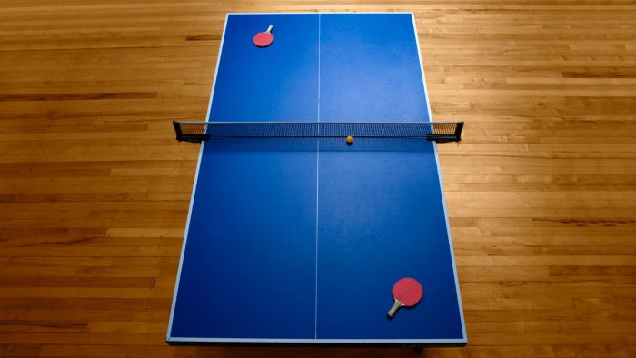 What are the dimensions of a table tennis table?