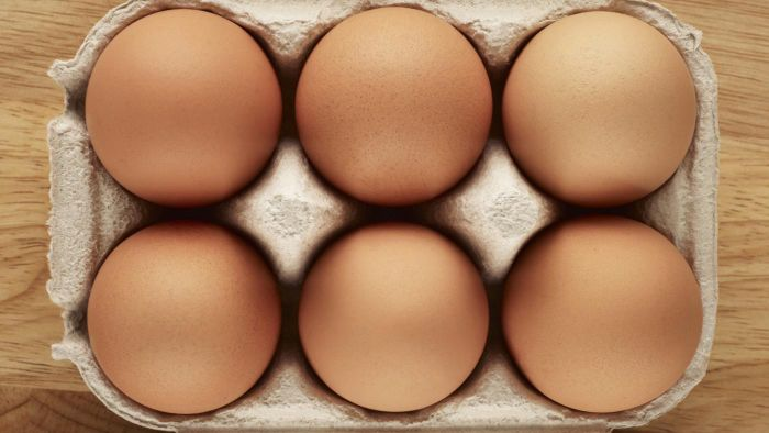 What Are the Parts of an Egg?
