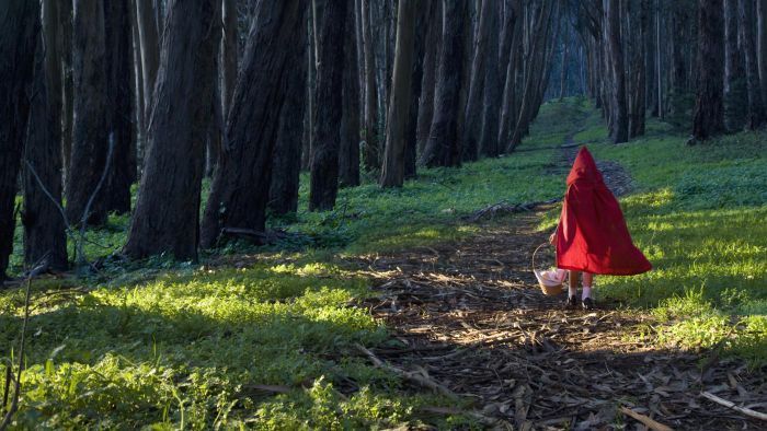 """What Is the Moral of """"Little Red Riding Hood""""?"""