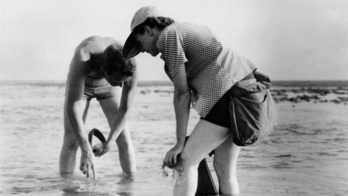 What Were the Names of Rachel Carson's Siblings?