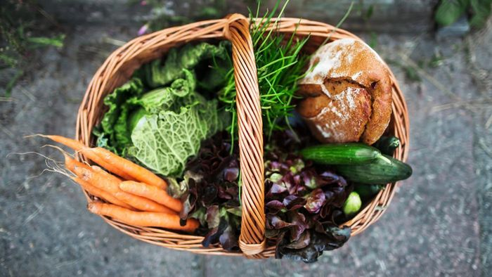 Why Is It Important to Eat a Balanced Diet?