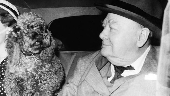 Who Was Winston Churchill and Why Was He Famous?