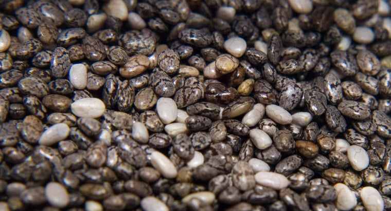 What Are the Side Effects of Chia Seeds?