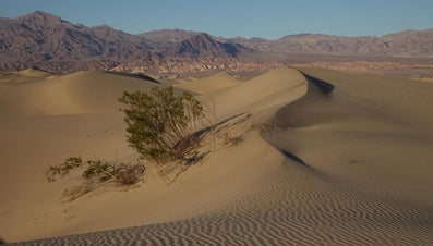 Which Agent of Erosion Creates Sand Dunes?