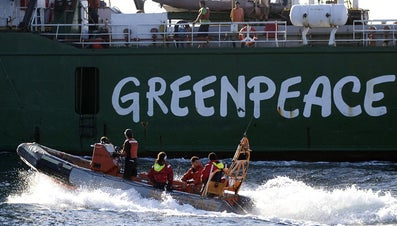 What Are the Aims of Greenpeace?