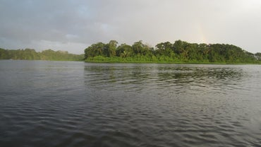 Why Is the Amazon River Important?
