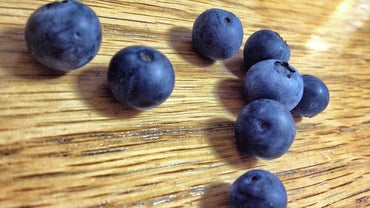 What Is Anthocyanin?